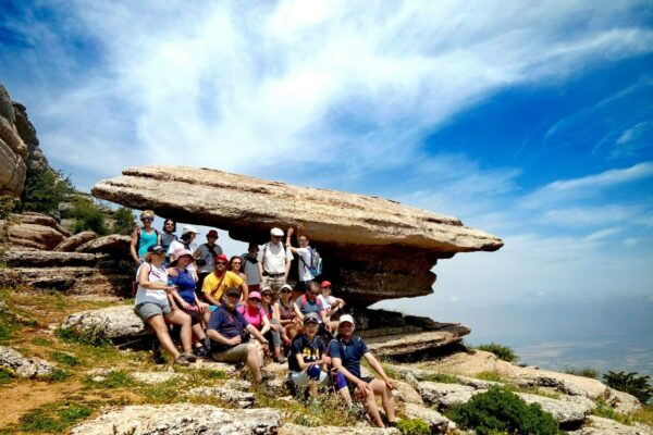 Torcal for groups